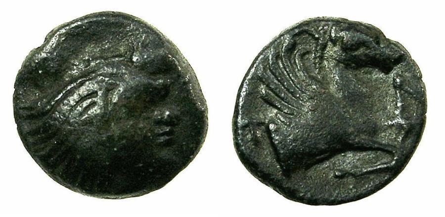 Ancient Coins - BLACK SEA.PANTIKAPAION.Circa 4th Cent BC.AE.16mm. Reverse.Forepart of Pegasus