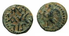 Ancient Coins - PHOENICIA.BERYTUS.Augustus 27BC -14AD.AE.13.5mm. struck circa 12-14 AD under Silanus legatus Syriae.