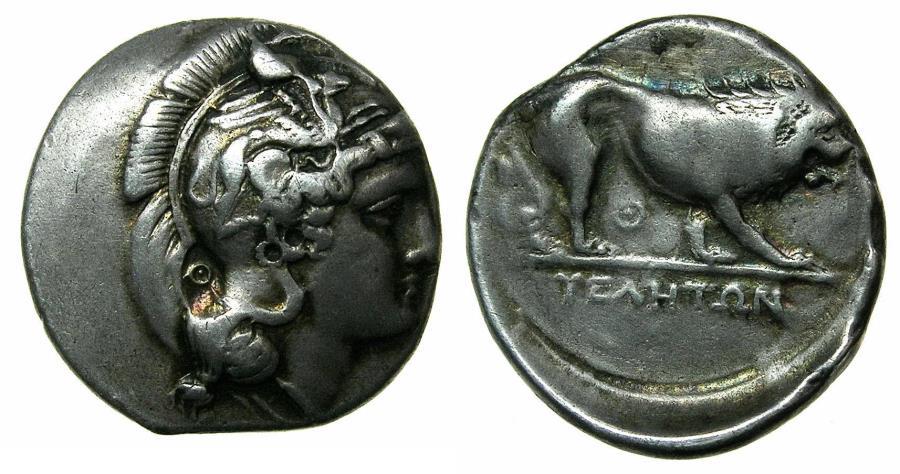 Ancient Coins - LUCANIA.VELIA.Circa 340-334 BC.AR.Didrachm ( Nomos ). Theta group. Reverse. Lion.