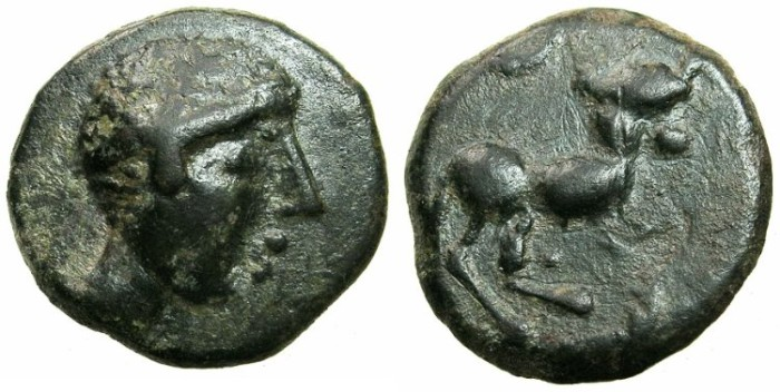 Ancient Coins - CELTIC.SPAIN.AE.after coin of CASTULO circa 200 BC.~~~Male head.~#~.Disjointed bull.