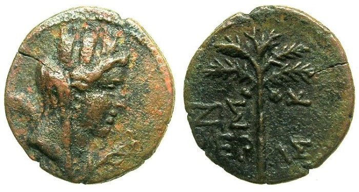 Ancient Coins - PHOENICIA.TYRE.Semi-Automomous.AE.18.Struck 91/92 AD. Tyche vieled.Palm Branch.