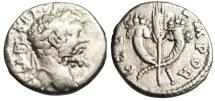 """Ancient Coins - Septimius Severus Denarius """"FELICIT TEMPOR Crossed Cornucopiae"""" Emesa Rare VF"""