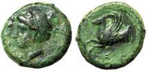 "Ancient Coins - Sicily, Syracuse AE Hemilitron ""Forepart Pegasos, Sigma"" Time of Timoleon VF"