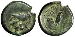 """Ancient Coins - Campania, Cales AE20 """"Helmeted Athena & Cock Standing, Star"""" 265-240 BC About VF"""