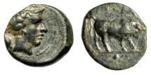 """Ancient Coins - Sicily, Gela AE Onkia """"Bull & Grain / Horned Head of Gelas"""" Good VF"""