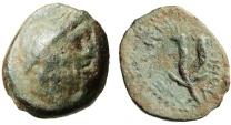 "Ancient Coins - Judea (Palestine), Gaza AE19 ""Zeus & Double Cornucopiae"" Very Rare"