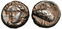 "Ancient Coins - Aeolis, Grynion AE11 ""Facing Apollo & Mussel Shell"" BMC 3-4 Very Rare VF"