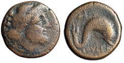 "Ancient Coins - Apulia, Luceria AE22 ""Poseidon Portrait & Dolphin"" Circa 211-200 BC Rare"