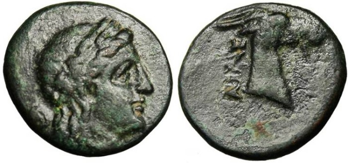 "Ancient Coins - Aeolis, Aigai AE16 ""Head of Goat"""