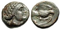"Ancient Coins - Euboea (Euboia), Chalkis (Chalcis) AE16 ""Female Right & Eagle"" Trident Rare gVF"