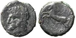 "Ancient Coins - King of Numidia: Micipsa AE26 ""Bearded Man Portrait & Horse, Pellet"" Fine"