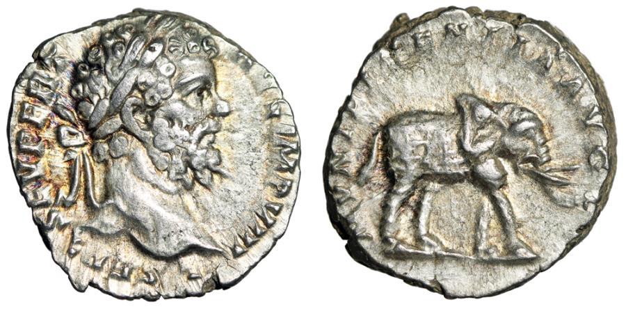"Ancient Coins - Septimius Severus AR Denarius ""MVNIFICENTIA AVG Elephant Wearing Cuirass"" EF"