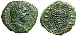 "Ancient Coins - Caracalla AE19 of Hadrianopolis, Thrace ""Bunch of Grapes"" Green Patina EF"