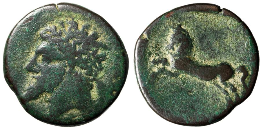 """Ancient Coins - King of Numidia, Micipsa AE26 """"Laureate Portrait & Horse Rearing"""" North Africa"""