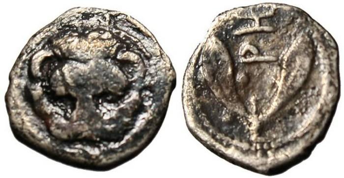 """Ancient Coins - Bruttium, Rhegium AR Litra """"Lion & Olive Sprigs"""""""