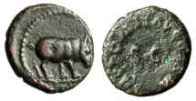 "Ancient Coins - Domitian AE Quadrans ""Rhinoceros (Rhino) Standing Right"" Rome 84-85 AD RIC 249"