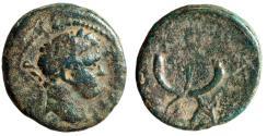 """Ancient Coins - Trajan AE19 of Judea, Tiberias """"Crossed Cornucopiae & Palm Frond"""" Fine"""