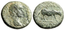 "Ancient Coins - Antoninus Pius AE18 ""Horse Grazing"" Ionia, Kolopon Extremely Rare"