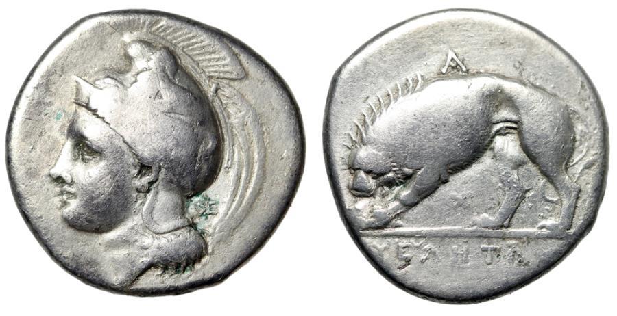 """Ancient Coins - Lucania, Velia AR Nomos """"Helmeted Athena & Lion Eating"""" CIrca 334-300 BC gF"""