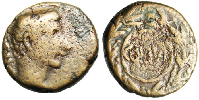 "Ancient Coins - Augustus AE16 ""COL IVL in Wreath"" Phoenicia Berytus (Berytos) BMC 49 Scarce"