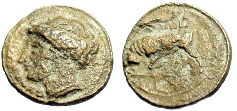 """Ancient Coins - Agathokles (King of Syracuse, Sicily) AE16 """"Kore & Bull Butting, Dolphin"""""""