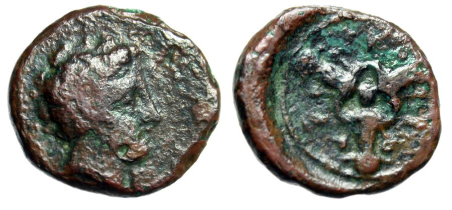 "Ancient Coins - Cyrenaica Cyrene (Kyrene) AE17 ""Carneius & Triple Silphium Plant"" Extremely Rare"