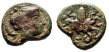 "Ancient Coins - Sicily, Syracuse AE Tetras ""Arethusa Right, Dolphins & Octopus"" CNS 1 Scarce"