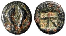 "Ancient Coins - Islands off Attica, Aegina AE13 ""Two Dolphins, A / Skew Pattern"" Scarce VF"