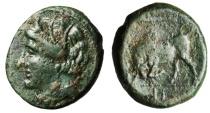 """Ancient Coins - Agathokles AE17 """"Persephone & Bull Butting"""" Sicily, Syracuse 317-289 BC VF"""