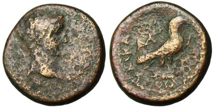 "Ancient Coins - Caligula (Gaius) AE19 ""Eagle on Shinbone"" Phrygia, Amorium Rare"