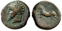 "Ancient Coins - Kings of Numidia: Massinissa AE27 ""Bearded Head Left & Horse Galloping"" VF"