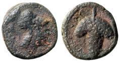 """Ancient Coins - Apulia, Arpi AE13 """"Helmeted Athens & Grape Bunch"""" Rare"""