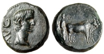 """Ancient Coins - Augustus AE17 """"Priests Plowing With Oxen"""" Macedonia Philippi Choice EF"""