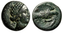 "Ancient Coins - Euboea, Chalcis (Chalkis) AE17 ""Hera & Eagle Flying, Snake"" 340-294 BC About VF"