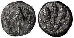 "Ancient Coins - Agrippa I, Procurator of Judea Under Claudius 41-42 AD AE Prutah ""Three Barley"""