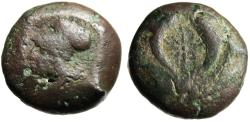 "Ancient Coins - Sicily, Syracuse AE Litra ""Athena & Starfish Flanked By Dolphins"" 4th Century BC"