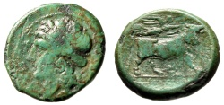 "Ancient Coins - Campania, Neapolis AE20 ""Apollo & Man Headed Bull Crowned by Victory"" Green"