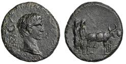 "Ancient Coins - Augustus AE18 of Philippia, Macedonia ""Portrait & Oxen Plowing"" Near EF"