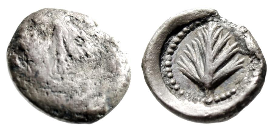 "Ancient Coins - Sicily, Selinos Silver Litra ""Selinon Leaf, Celery"" Circa 515-470 BC Rare"