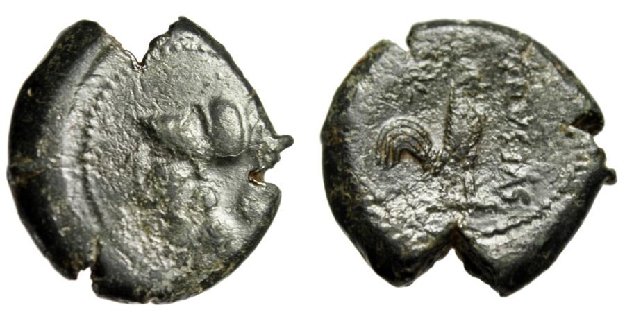 "Ancient Coins - Campania, Suessa Aurunca AE21 ""Athena & Cock (Rooster), Star"" 265-240 BC Rare"