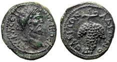 """Ancient Coins - Septimius Severus AE19 of Hadrianopolis """"Large Grape Bunch"""" About EF Rare"""