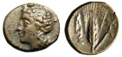 "Ancient Coins - Lucania, Metapontion AE16 ""Dionysos & Barley Ear of Five Grains, Torch"" VF"