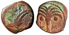 """Ancient Coins - Judea, Marcus Ambibulus AE Prutah """"Curved Barley & Palm Tree"""" 10/11 CE"""