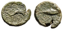 "Ancient Coins - Sicily, Solus AE12 ""Dolphin Swimming & Tunny Fish Swimming"" After 214 BC Rare"
