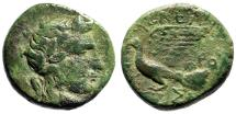 """Ancient Coins - Sikyonia, Sikyon AE17 """"Apollo & Dove Flying"""" Kleander Magistrate Scarce"""