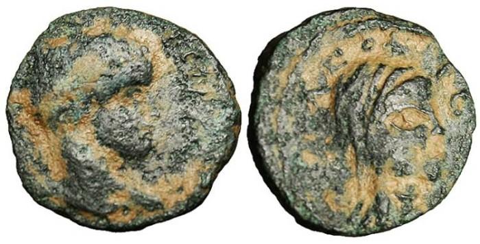 "Ancient Coins - Elagabalus, AE14 ""Veiled Head Right"" Arabia, Petra Mint RARE"