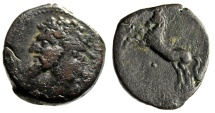 "Kings of Numidia: Micipsa AE27 ""Bearded Head & Horse Rearing, Pellet"" VF"