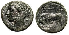 "Ancient Coins - Kingdom of Syracuse: Hieron II AE20 ""Kore, Grape Bunch & Bull Butting, Club"""