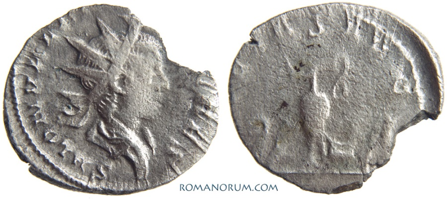 Ancient Coins - SALONINUS. (AD 258-260) Antoninianus, 2.30g.  Cologne. PIETAS AVG Relatively scarce.