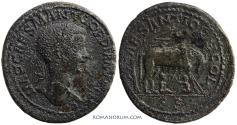 Ancient Coins - ANTIOCH, PISIDIA Gordian III. (AD 238-244) AE36, 28.08g.  With the Ficus Ruminalis. Large Flan